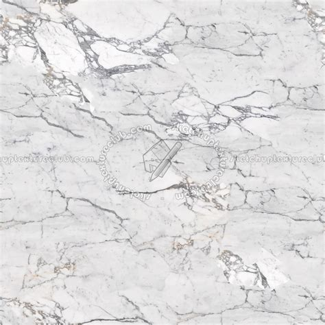 slab marble white calacatta texture seamless