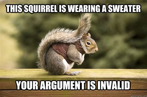 Squirrel Meme - this squirrel is wearing a sweater your argument is