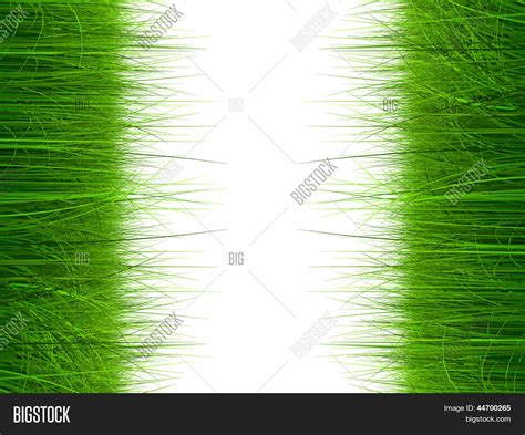 How To Make Vertical Garden - high resolution green fresh and natural 3d grass field or lawn isolated on white background