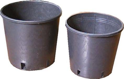 vasi per vivai come scegliere i vasi per vivai scelta dei vasi ecco
