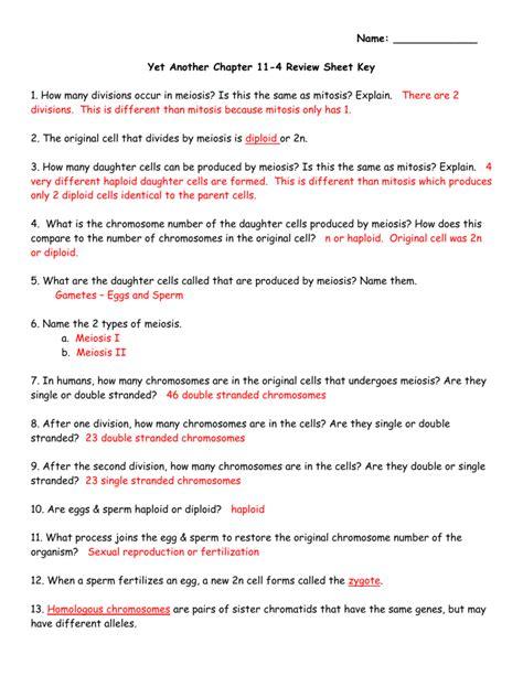 11 4 Meiosis Worksheet Answers