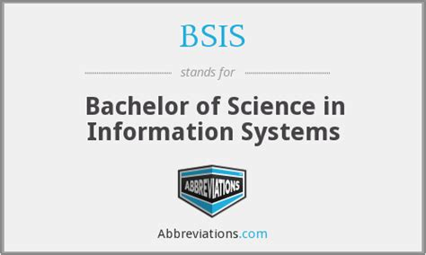 bsis bachelor of science in information systems