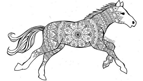 morgan horse coloring page pictures horses coloring pages simple for kids incredible