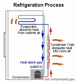 appliance411 faq frost free refrigerator not cooling properly