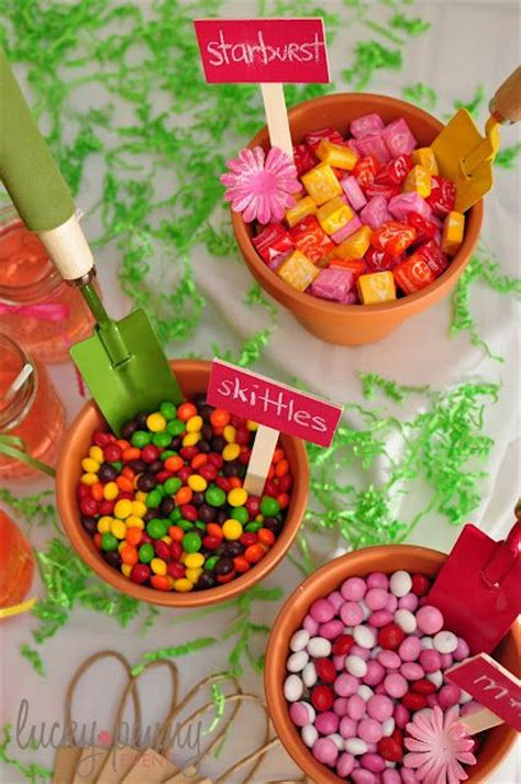 garden themed  birthday party food  drink ideas