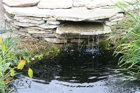 Superbe Petit Jardin Avec Bassin #3: rimg_219.jpg