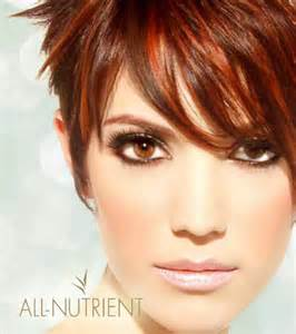 nutrient hair color product spotlight all nutrient organic hair color hair
