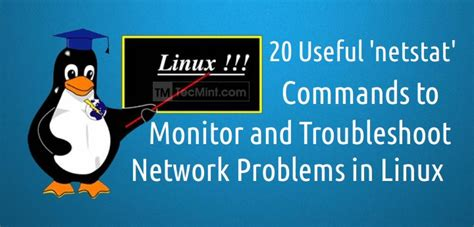 tutorial netstat linux how to find and sort files based on modification date and