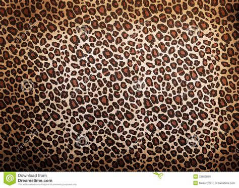 leopard pattern image leopard pattern royalty free stock images image 33663899