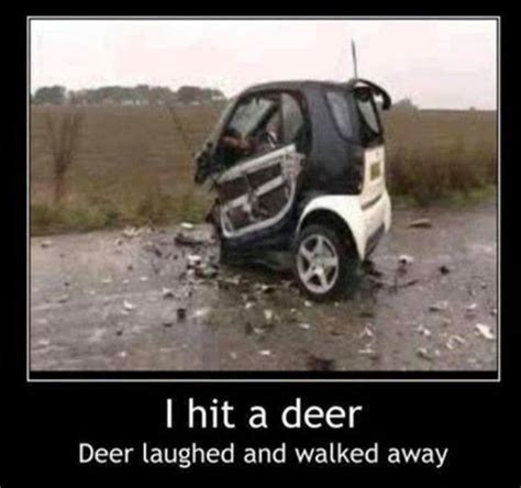 Car Accident Memes - funny car crash i hit a deer jokes memes pictures