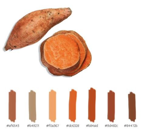 what color are sweet potatoes 456 best images about colour palette on color
