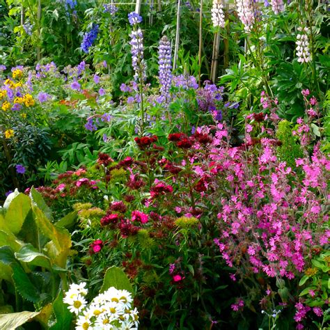 cottage garden planting guide how to create a cottage garden help ideas diy at b q