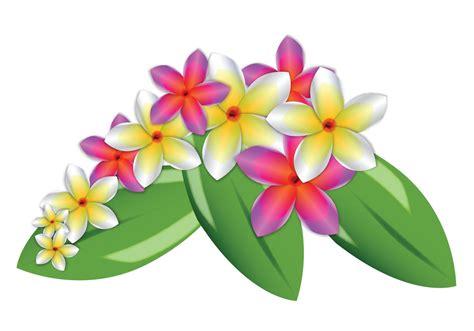 plumeria vector plumeria vector flowers download free vector art stock