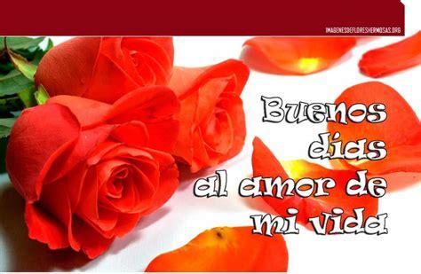 imgenes de rosas para desear buenos das im 225 genes de rosas para desear buenos d 237 as saludos con
