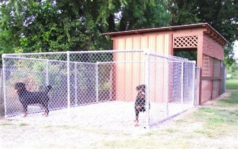 rottweiler kennel best rottweiler kennel in usa dogs our friends photo