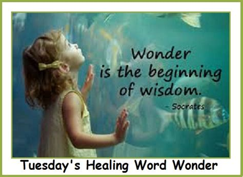healing virtues transforming your practice through the animal reiki practitioner code of ethics books tuesday s healing word balanced s
