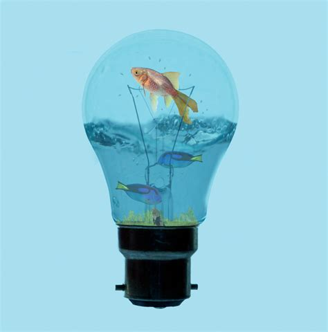 photoshop tutorial fish tank in a light bulb part 2