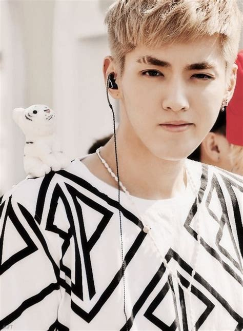 What Kristopher Is by Kris Exo K Popers
