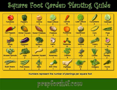 gardening guides square foot garden planting guide peak prosperity
