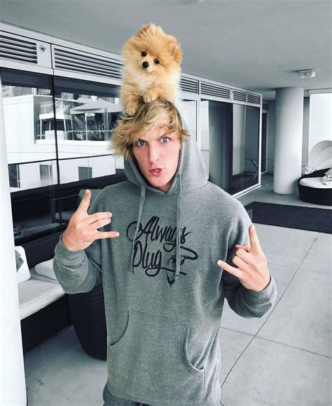 logan paul kong 256 best images about logan paul on dates watches and curtis lepore