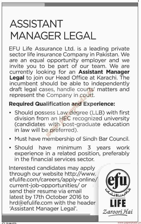 assistant manager legal jobs dawn jobs ads 02 october