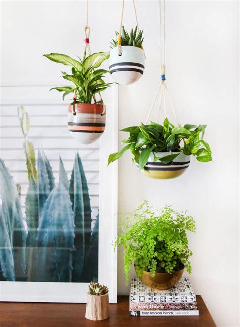 hanging indoor garden an indoor hanging garden with anthropologie a how to
