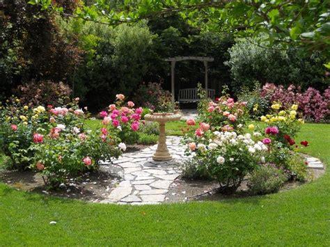 c in my backyard 25 best ideas about roses garden on pinterest growing