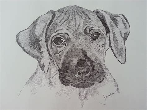 tattoo pen for dogs to the point pup rhodisian ridgeback pointilisme