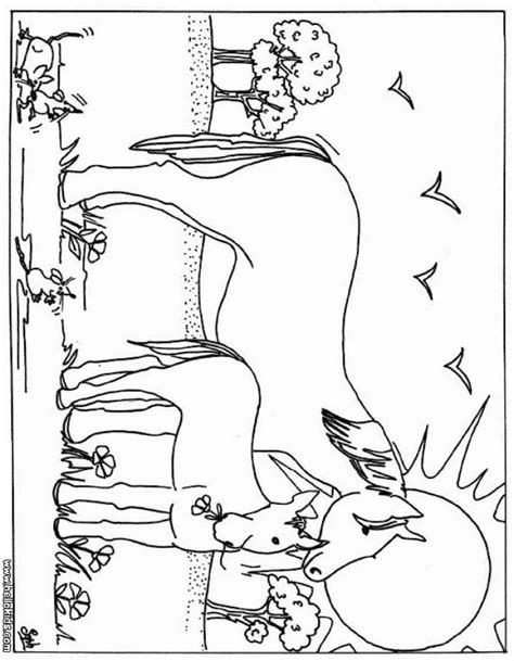 beautiful horse pages coloring pages