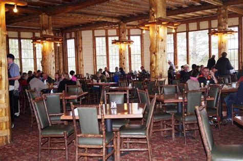 lake yellowstone hotel dining room dining room picture of lake lodge cafeteria yellowstone