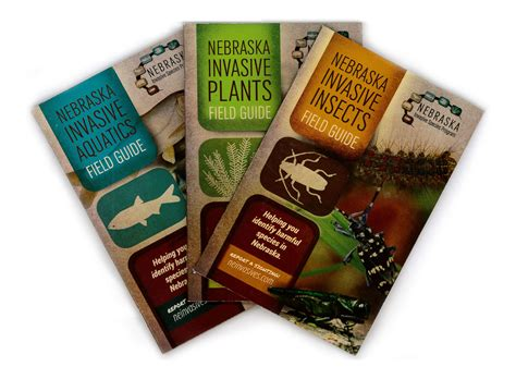 immigration pocket field guide 2018 edition books home nature wildlife pocket guides