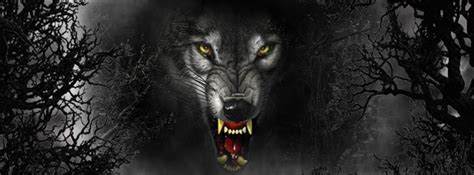 scary wolf cover