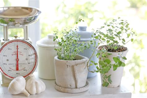 how to make an indoor herb garden how to make an indoor herb garden design build pros