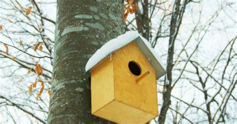 cub scouts birdhouse plans birdhouse