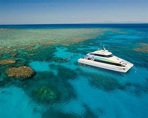 great barrier reef dive trips conservation facts info liveaboard diving in cairns