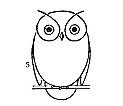 Owl Outlines Drawings by My Owl Barn 2011 04 10