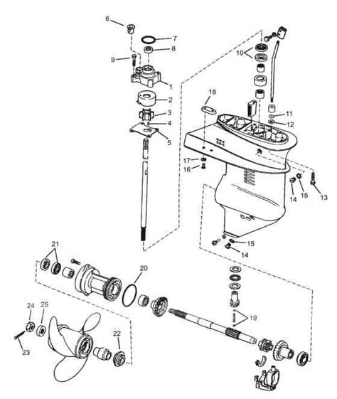 evinrude 15 hp fuel diagram evinrude 15 hp parts diagram automotive parts diagram images