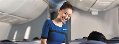 Bilingual Flight Attendant by United Airlines Flight Attendant In Chicago Il