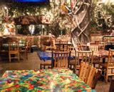 Niagara Falls Gift Cards - restaurant dining gift card rainforest cafe niagara falls restaurant