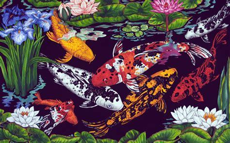 wallpaper bergerak koi gambar ikan koi animasi bergerak gambar animasi ikan koi