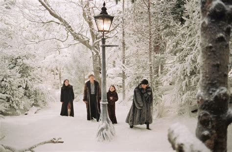 Narnia And The Wardrobe by The Gallery For Gt The The Witch And The Wardrobe