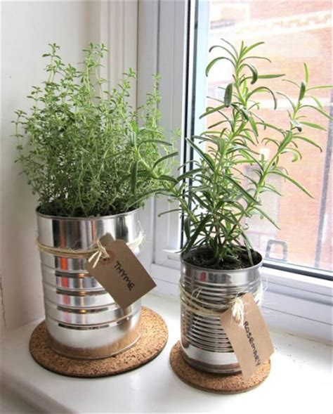 diy indoor herb garden herb gardens to practice your green thumb with diy to make