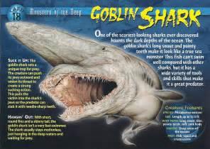 goblin shark wierd wild creatures wiki