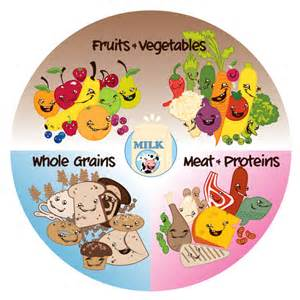 Healthy Plate Template by Healthy Helping Plate Pocketwookie