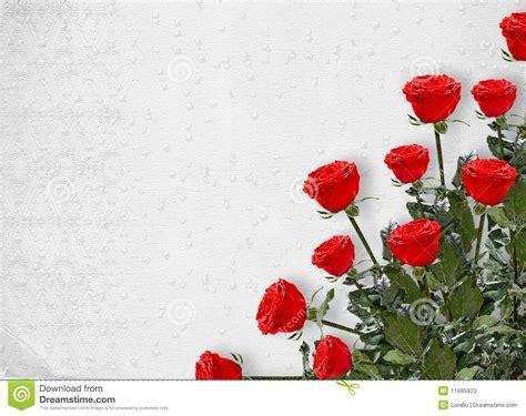 rosas para escribir postales con flores cerca amb google postales