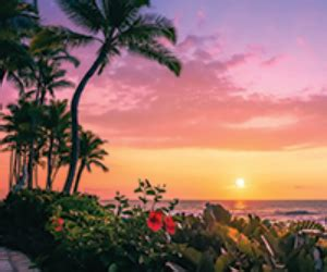Hilton Hawaii Sweepstakes - win a trip to hilton waikoloa village in hawaii free sweepstakes contests giveaways