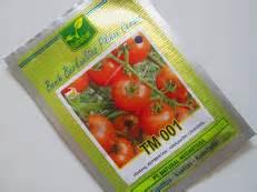 Benih Tomat Unggul Biofarming Organik Meningkatkan Dan Kesuburan