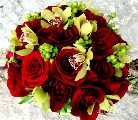 world best flower best flowers in the world best flowers in the world
