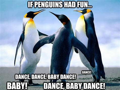 Funny Penguin Memes - penguins with funny captions memes