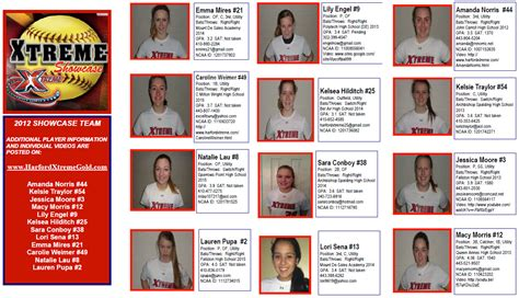 .blank softball player profile template softball player profile sheet
